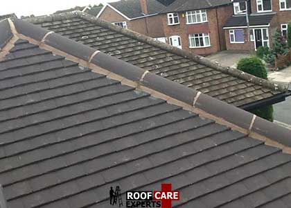 Ridge Tile Repairs Kildare